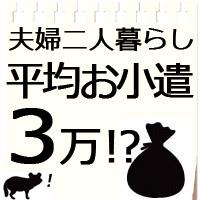 共働き夫婦のお小遣い1人平均3万円だけど5万位欲しい