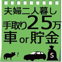 【夫婦二人暮らし】手取り25万の生活費で車買うか貯金するか